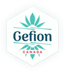 +Gefion logo